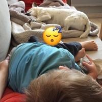 Congé Maternité Et Chomage